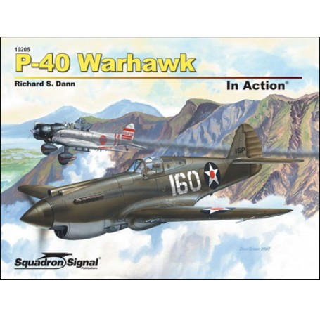 P-40 Warhawk In Action
