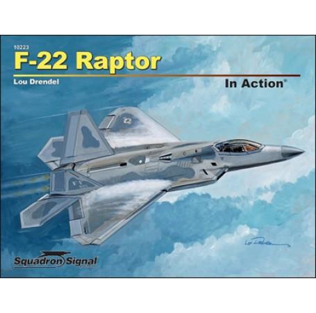 F-22 Raptor In Action