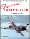 Grumman Navy F-111B Swing Wing