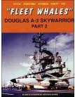 Fleet Whales Douglas A-3 Skywarrior - Part 2