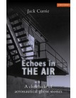 Echoes in the Air: A Chronicle of Aeronautical Ghost Stories