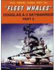 Fleet Whales Douglas A-3 Skywarrior - Part 2